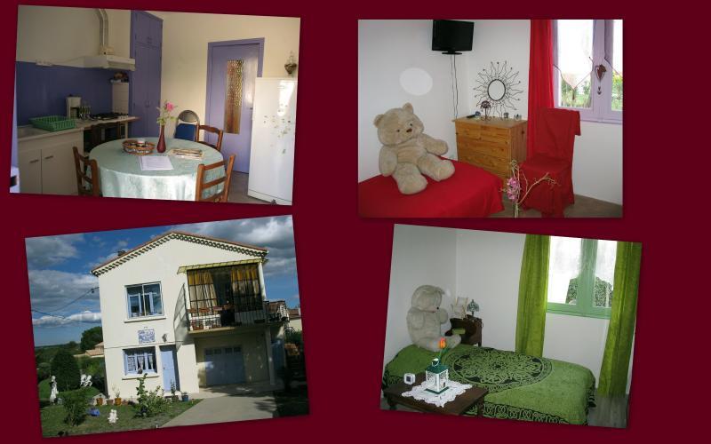 SUD CEVENNES entre MER et MONTAGNE proche ANDUZE, location de vacances à Anduze
