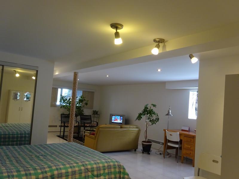 Open concept bedroom+living room