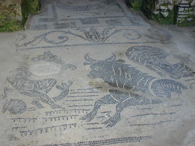 mosaïque particulière Roman Villa