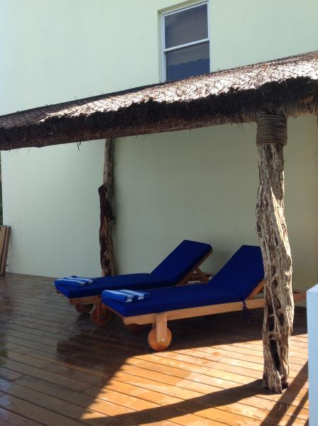 Pool Palapa with Loungers