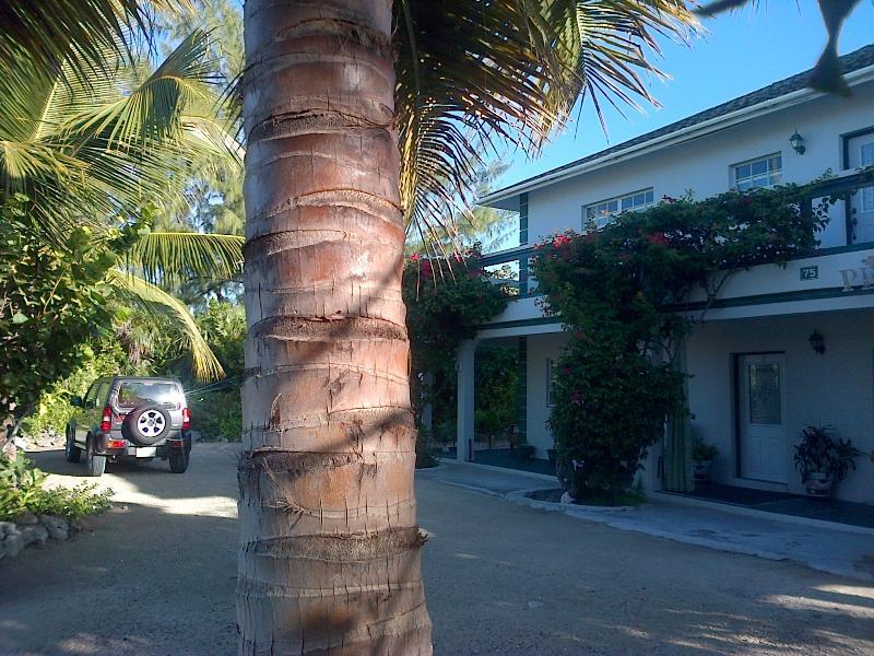 Silver Palm Beach House Turks and Caicos