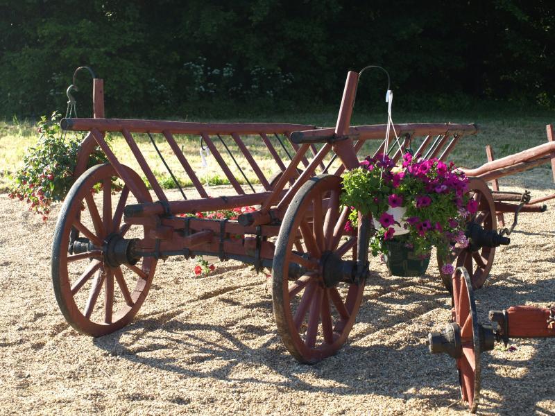 Gypsy cart in shared garden