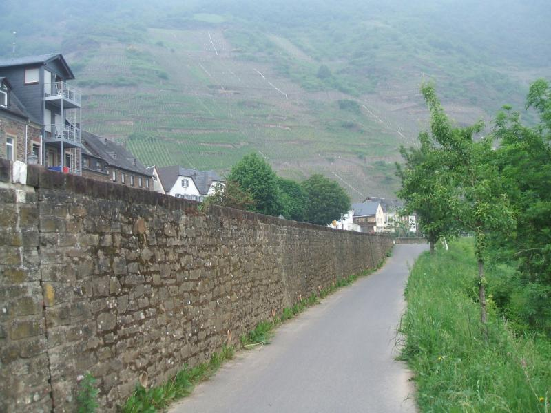 One of the many cycle paths, just leaving the village