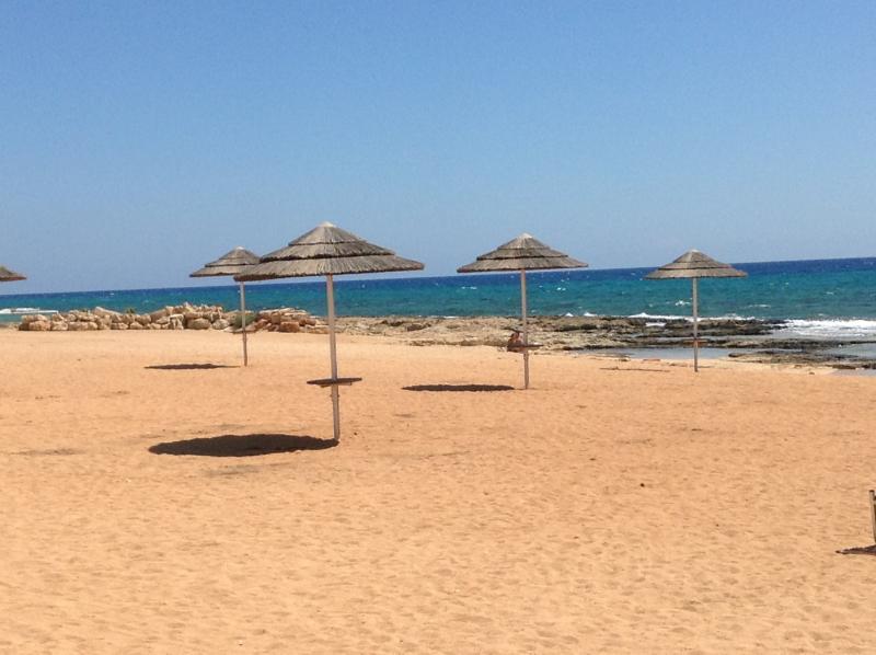 Ayia Thekla Beach!