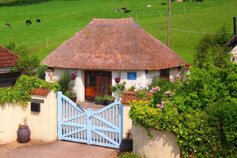 The Nest - 5* Thatched Cottage, location de vacances à Shaldon