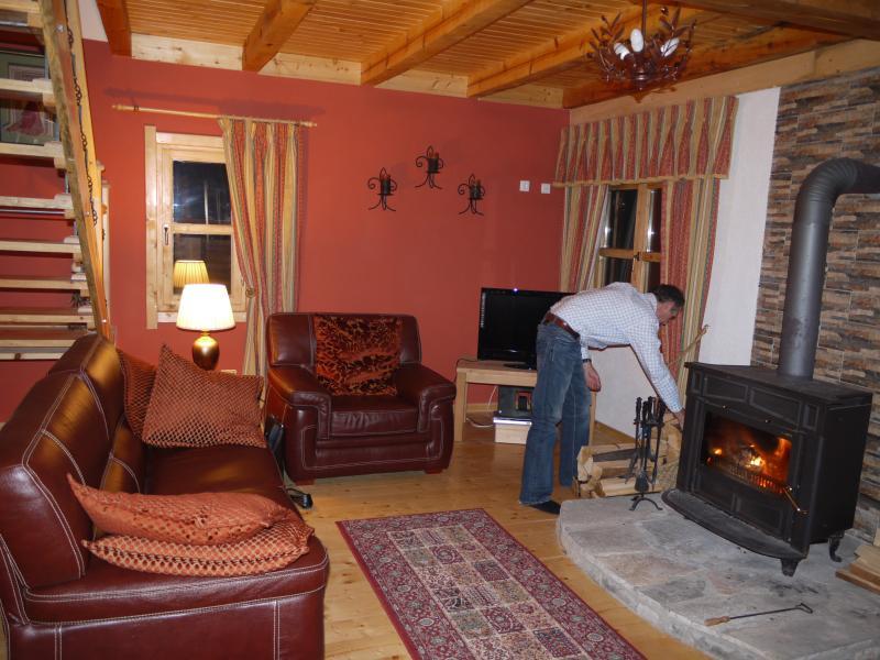 Amazing wood burning stove.