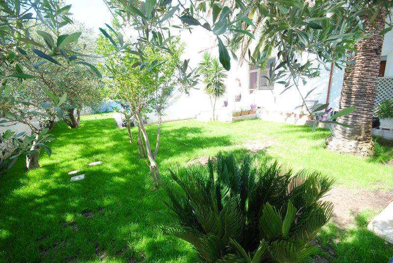Jardin à côté de la piscine