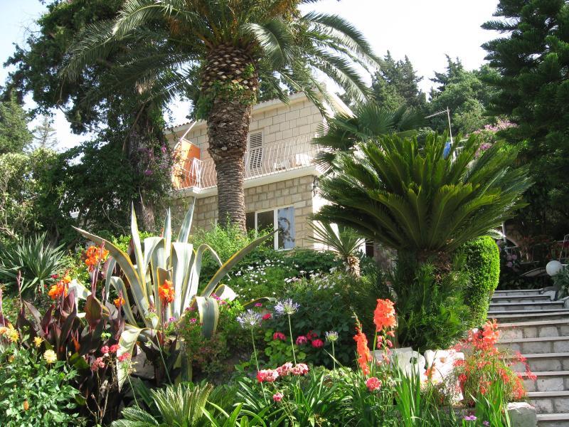 VILLA NINA  - room 3, vacation rental in Mlini