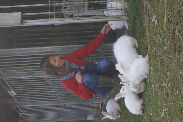 les lapins angoras, confection de bonnet, echarpes, etc. 100% local et naturel