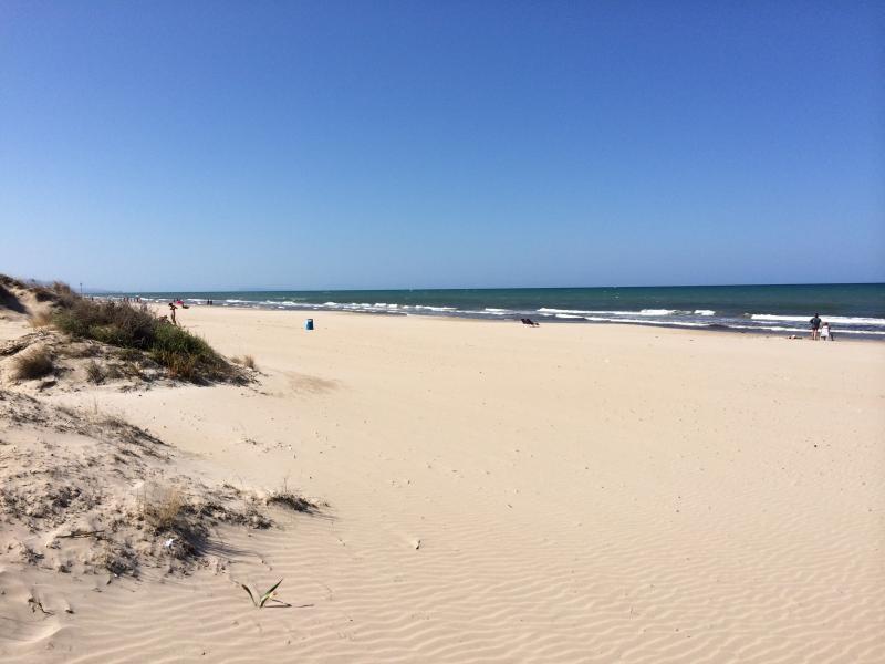 Der Strand in naher Umgebung der Villa Finca Costa Blanca