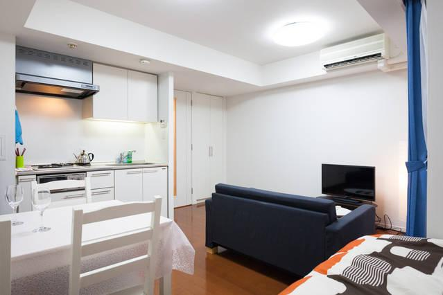 Overview of the apartment. Brand new, Spacious and Luxury!