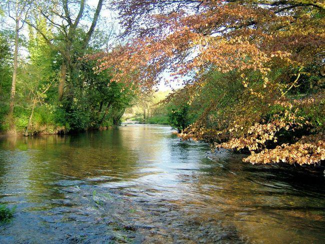 Our own private stretch of the Camel River - ask about salmon & sea trout fishing