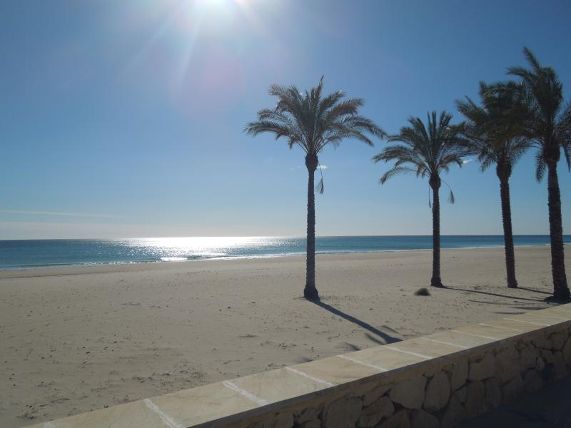 Beautiful large beach only 1 street from the apt, 3 min walk