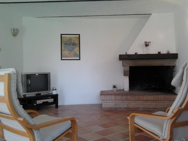Living room with TV, DVD player and fireplace