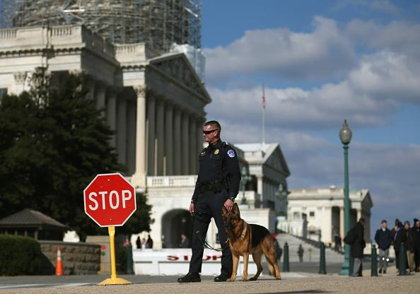 Security Dog around the US Capitol
