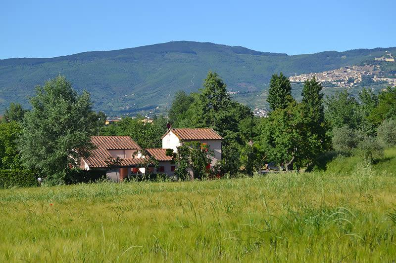 Laura, private villa with 2 bedrooms just 7 km from Cortona. Wi-Fi & pet allowed, vacation rental in Montecchio