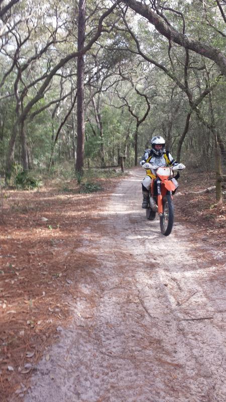 Rijden op Ocala boswegen
