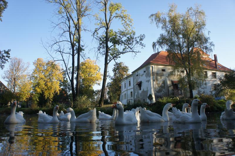 The Prince-Bishops Palace  at Piotrowice Nyskie, holiday rental in Zlate Hory