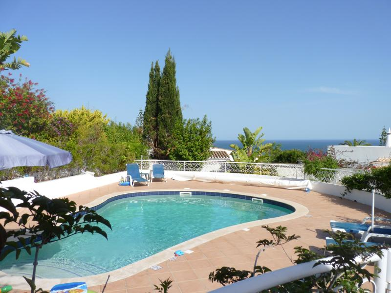 The heated saltwater pool with sea view from the terrace.