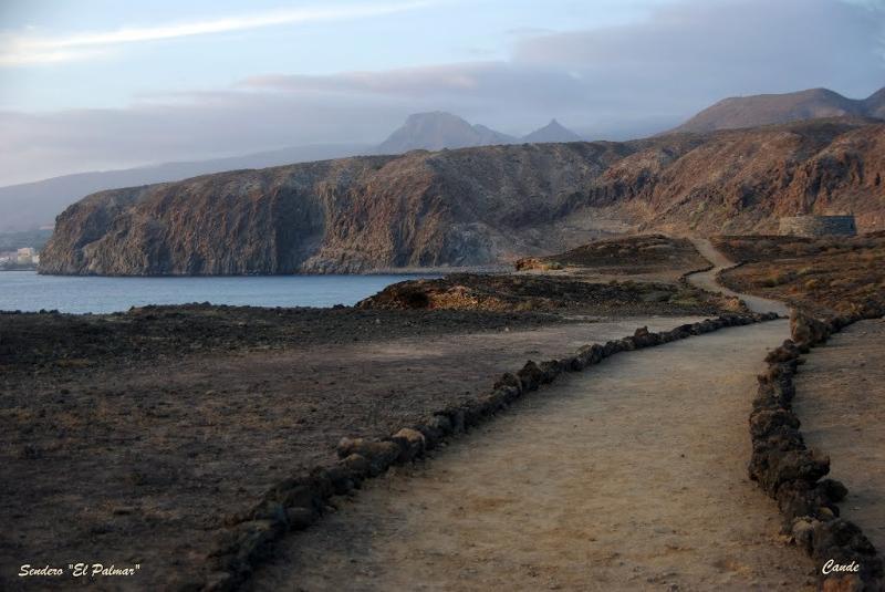 Palmar Landscape