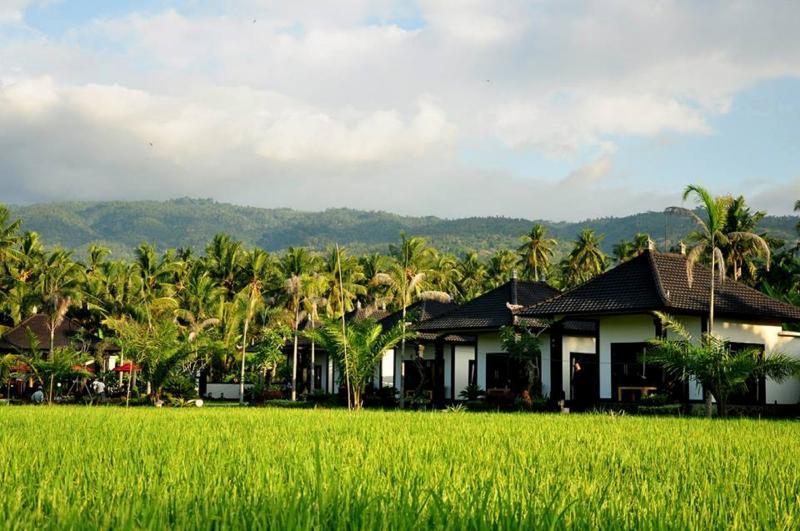 Buitenkant met rijst veld weergeven