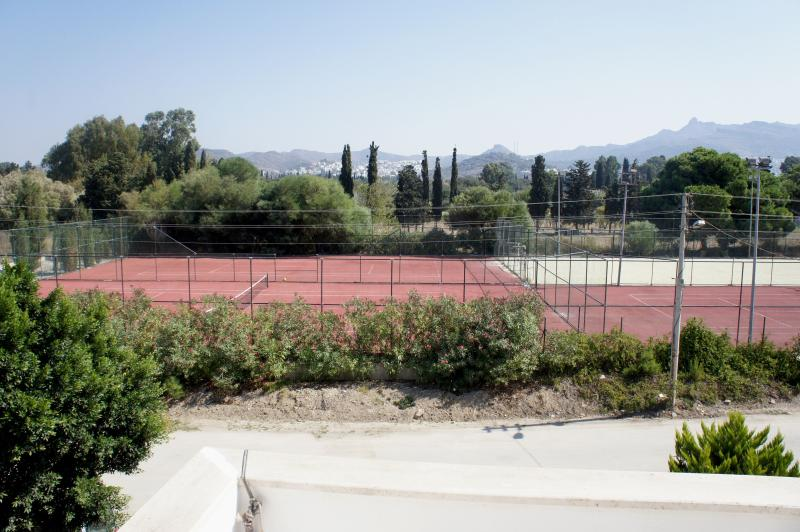 Tennis Court in Front of house