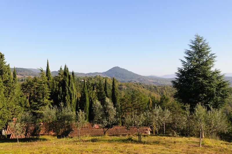 La Fagianaia: Sight on Montauto Castle
