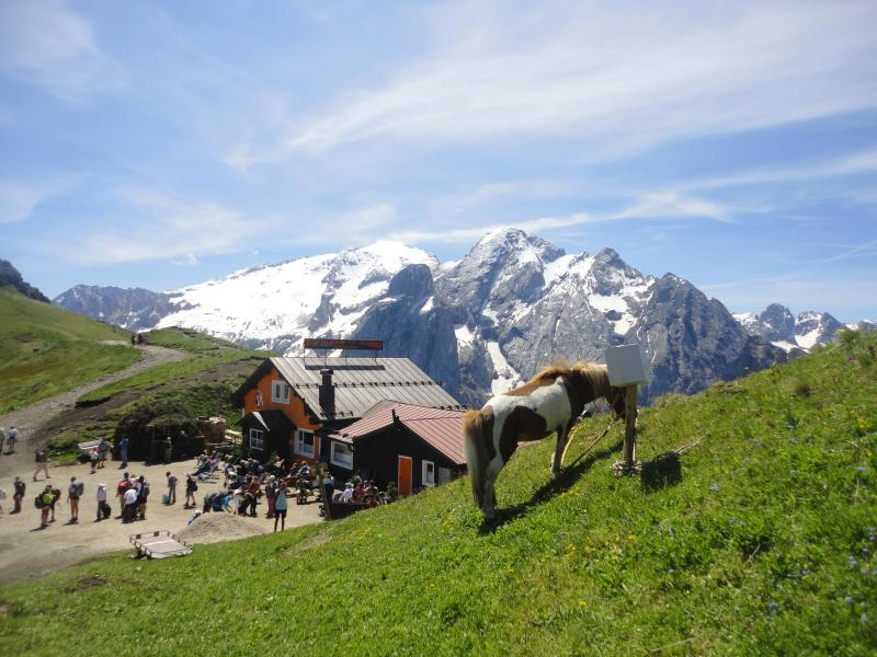 Pordoi Pass -Marmolada view
