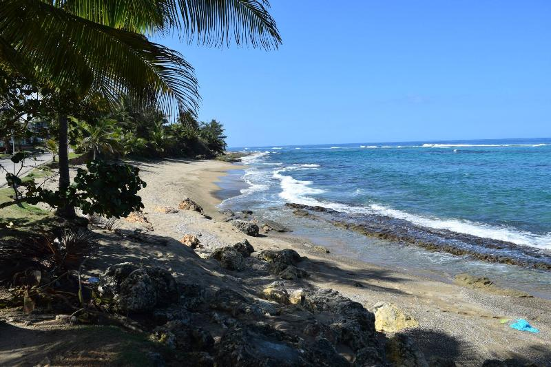 Sea Turtle Guest House-Oceanfront, holiday rental in Hatillo