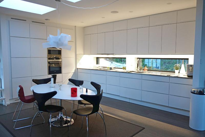 Big kitchen with fridge, freezer, dish washer, microwave, induction stove, coffee / espresso machine