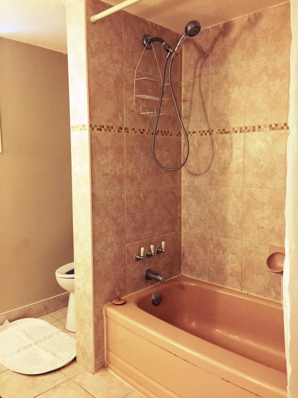 Cuarto de baño tiene bañera y ducha ajustable
