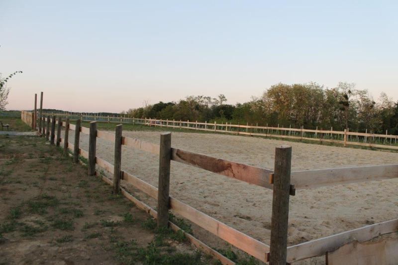 Arena for riding