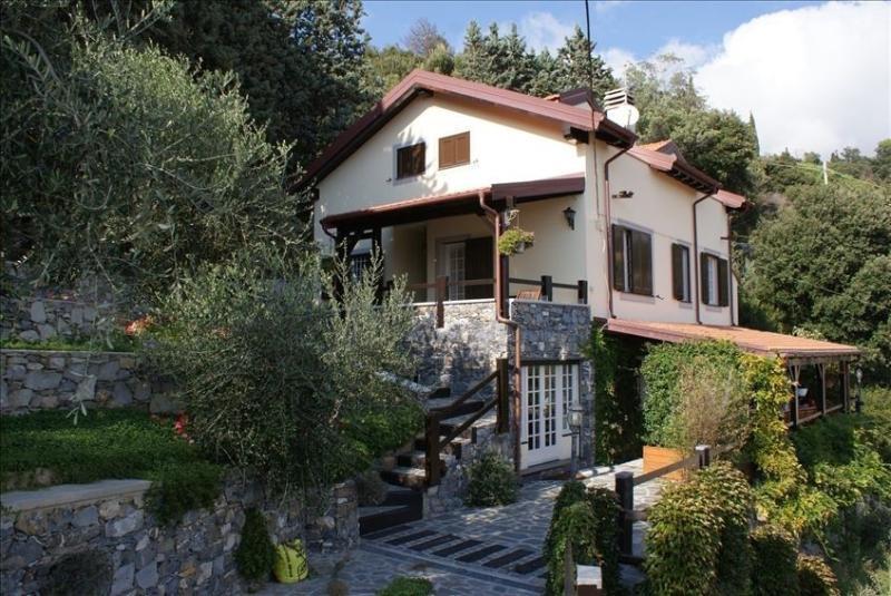 Cottage oliva, San Lorenzo