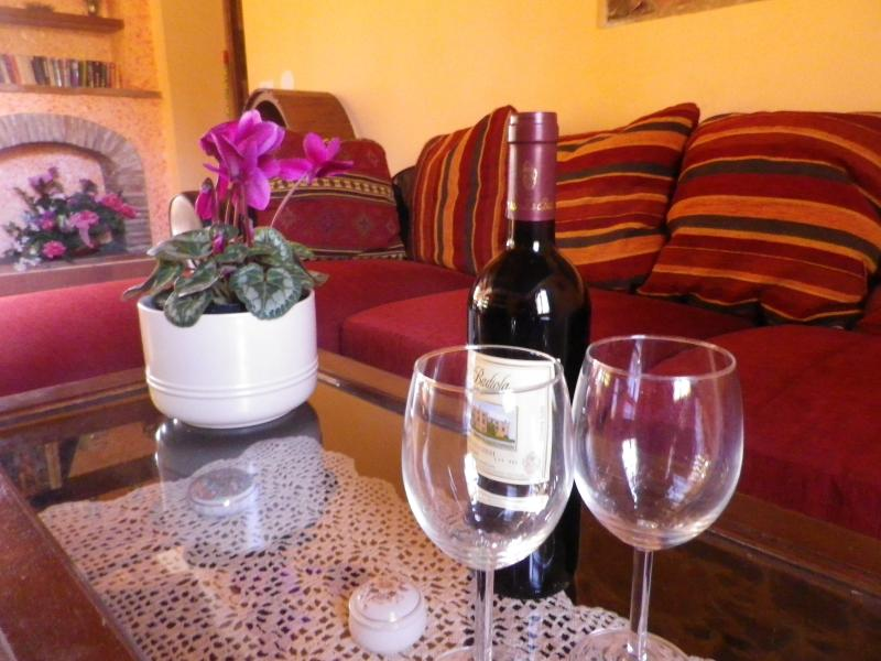 a glass of wine relaxing on the sofa
