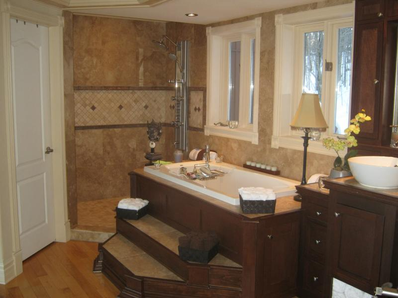 Master Suite Spa Tub and Marble Shower with Jets