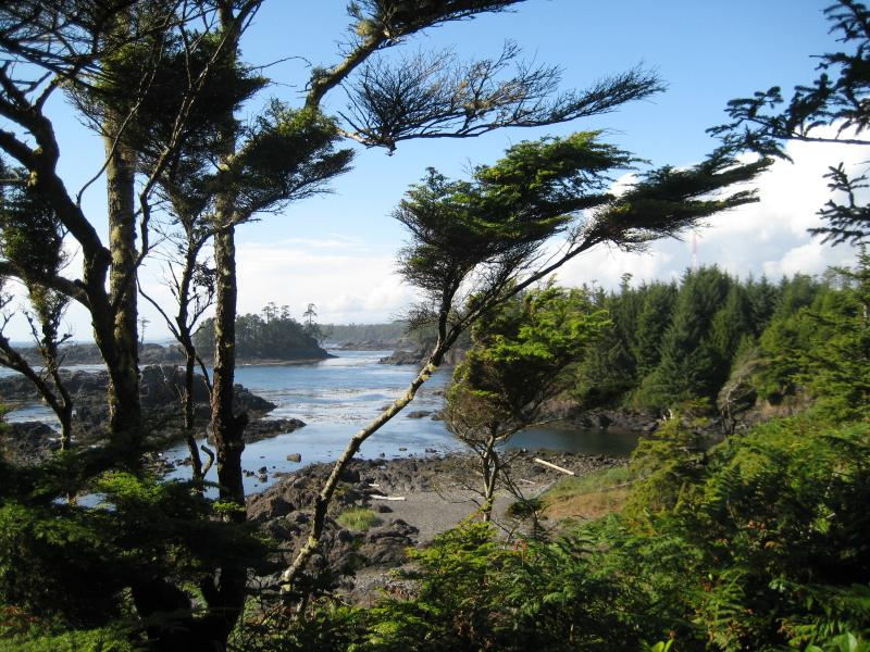Hike the wild Pacific Trail