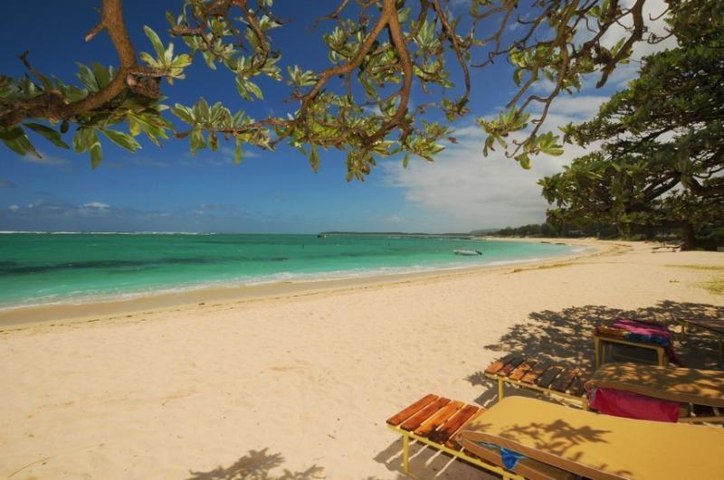 Villa L'Artiste Palmar Beach Pool 50 m to beach, holiday rental in Flacq District
