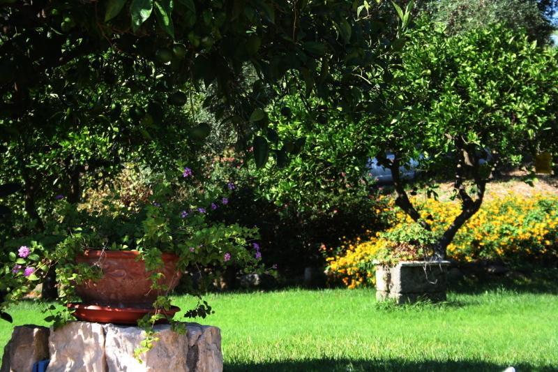 Agriturismo Borgo Levante - Verde 3 posti, holiday rental in Villasmundo