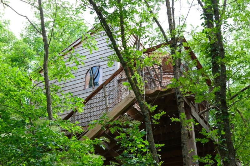 the fisherman, Fisherman tree house cabin