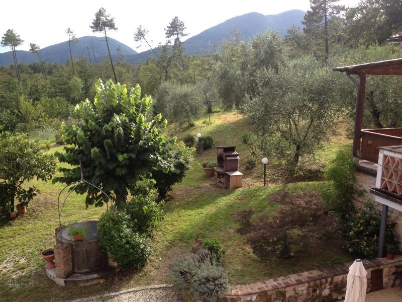 Uitzicht op de Olive Groves
