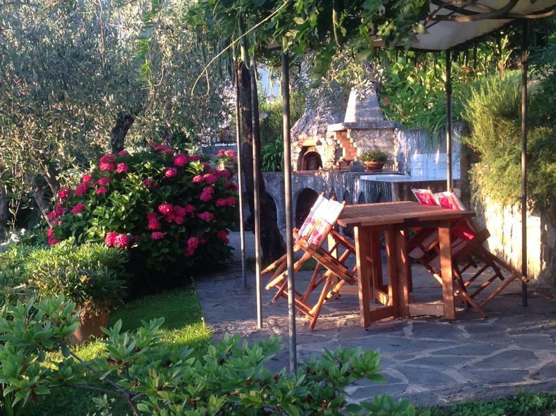 Angolo del giardino con BBQ