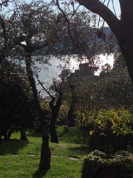 Scorci del giardino con vista mare