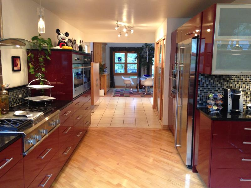 Contemporary kitchen cabinets and countertops
