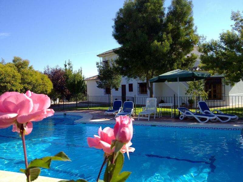 Una gran piscina, rodeada de amplios espacios exteriores con vistas fabulosas.