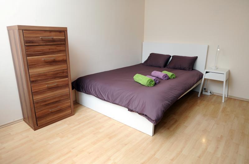 Lill apartment, vacation rental in Ljubljana