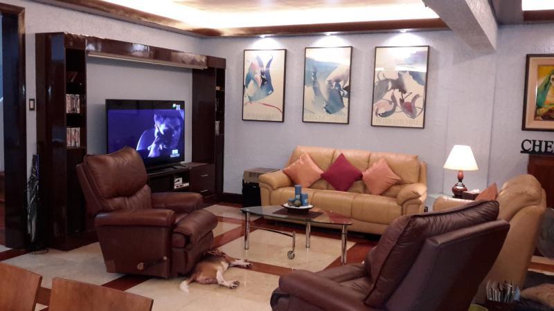woonkamer met 65' slimme TV