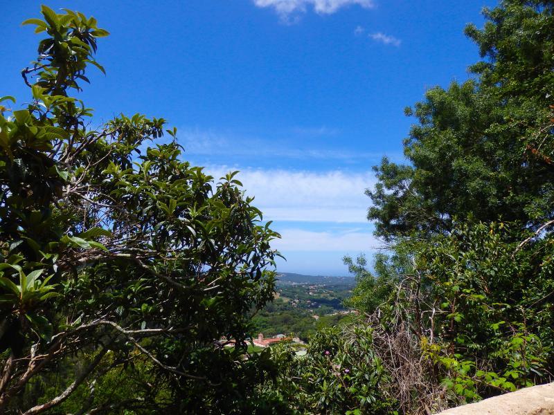 A vista para o mar, o vale e do palácio de Monserrate da sua casa de campo