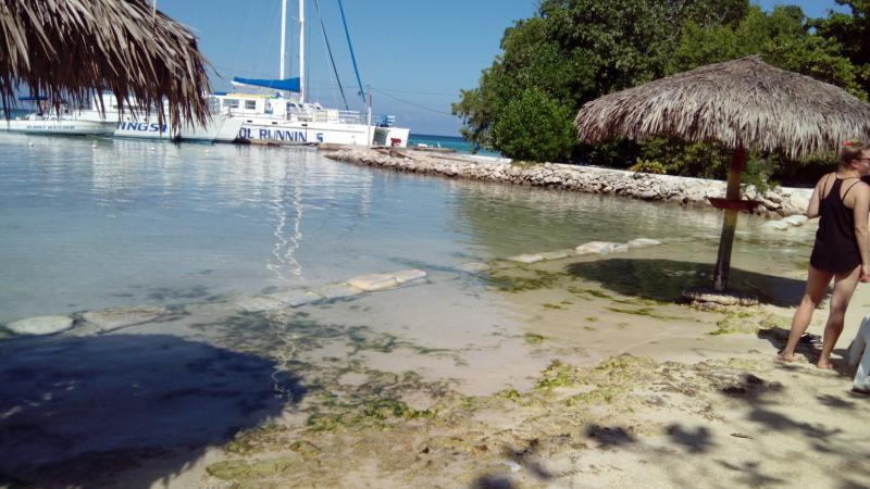 carib - Mahogoney beach