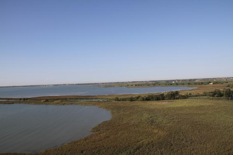 The Nature Reserve: the small protected area of Stella River Mouth