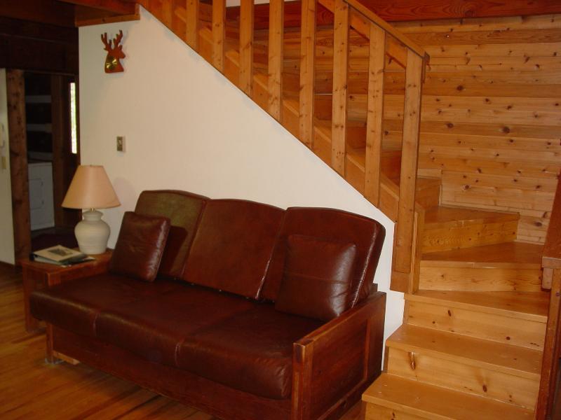 Living Room / Queen Sleeper Sofa
